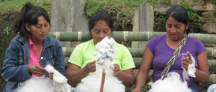Foro Internacional de Mujeres Indigenas